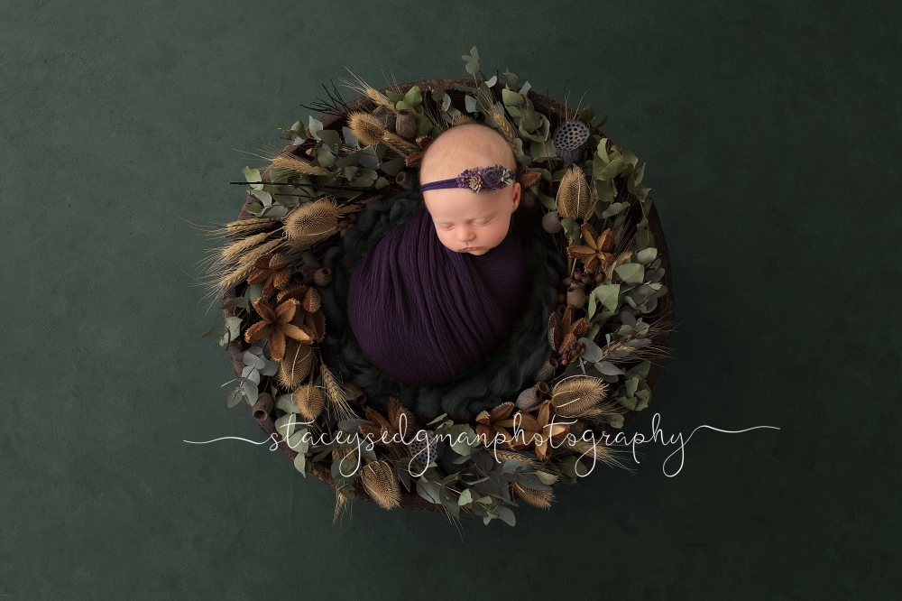 Newborn Baby girl in green floral wreath and purple wrap Luisa Dunn Digital Background
