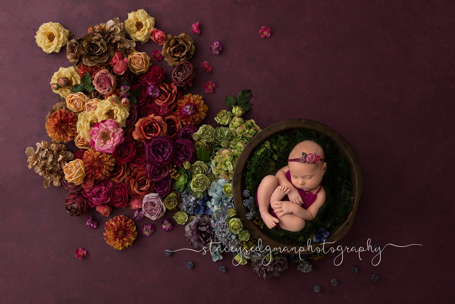Rainbow Baby in bowl on purple backdrop with rainbow flowers