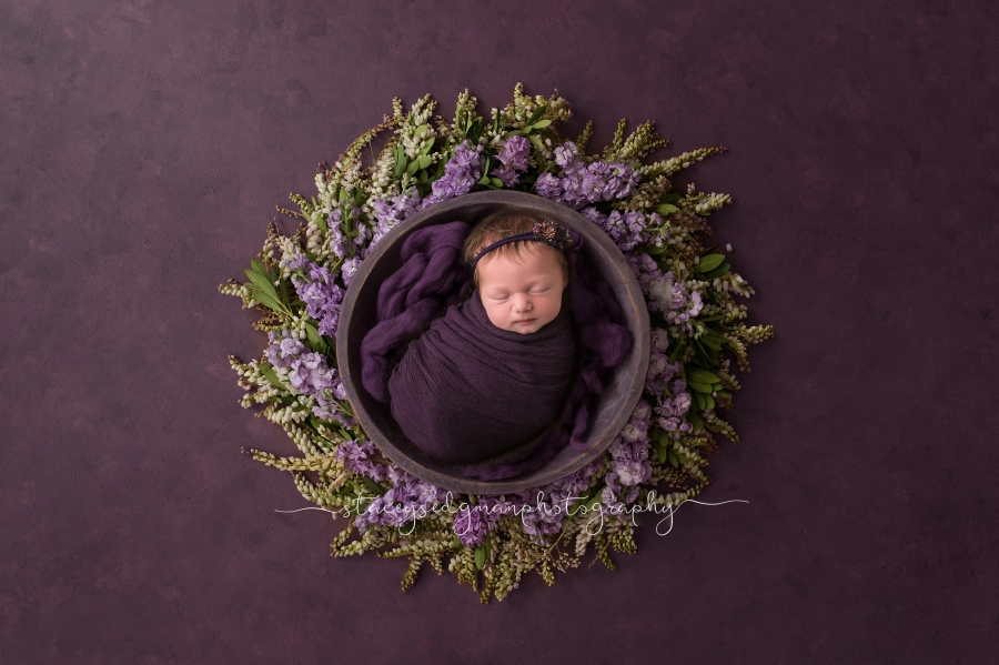 Baby in a bowl against a purple flower wreath on a purple backdrop